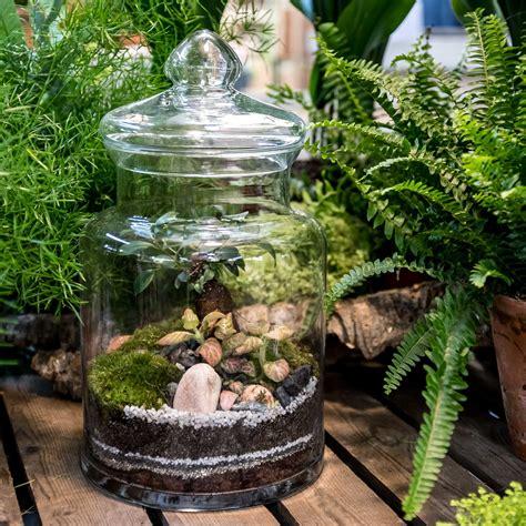 buy indoor prairie plant arrangement  bottle shaped