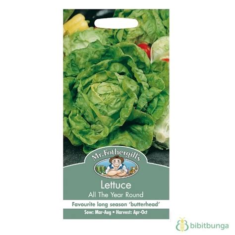 Mr Fothergills Best Of All benih mr fothergills lettuce butterhead all the year 1250 biji jual tanaman hias