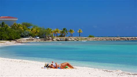 beach house aruba aruba vacations 2017 package save up to 603 expedia