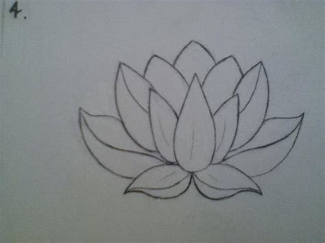Lotus Pattern Drawing | this lotus drawing is the exact shape i want for my lotus