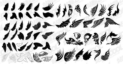 number  exquisite wings vector material