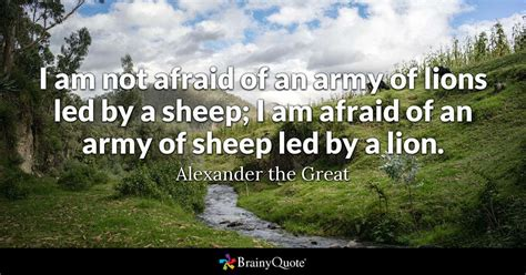 Madonna Is Not A Friend To The Sheep by I Am Not Afraid Of An Army Of Lions Led By A Sheep I Am