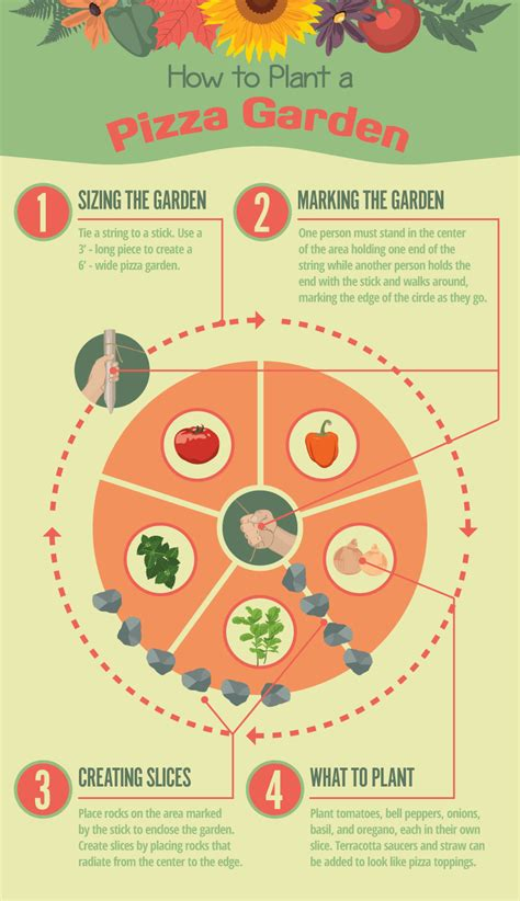 Pizza Garden by How To Start A Pizza Garden Infographic