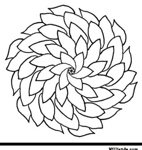 coloring pictures of flowers to print flower field coloring pages