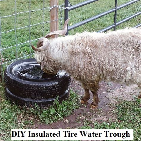 diy insulated tire water trough  prepared page