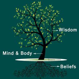 Meaning Of Trees best 20 tree of life meaning ideas on pinterest