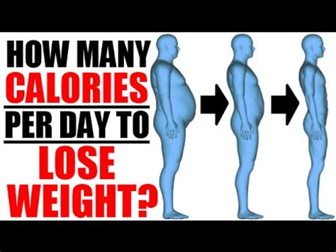 How Many Calories Does Detox Burn by How Many Calories Per Day To Lose Weight Burn Fast