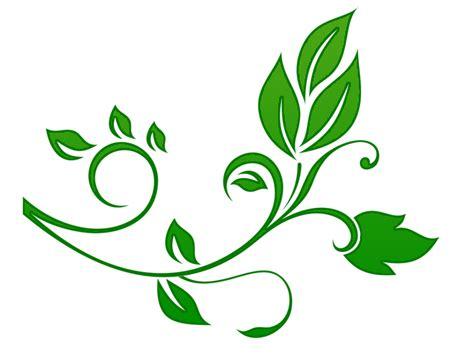 wallpaper design png floral png my blog page 3