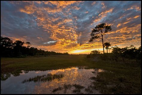 scapes south carolina photographer patrick o brien