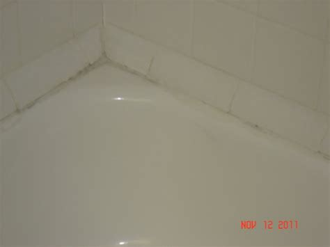 mold around bathtub rust on the shower head pipe picture of comfort suites