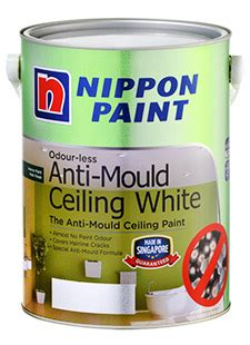 antifungal bathroom paint antifungal bathroom paint anti mould paint bathroom