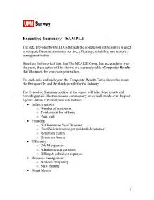 sample executive summary example executive summary