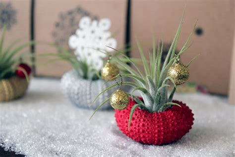 5 unique holiday centerpiece ideas