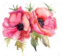 botany watercolor stock photos images royalty free botany