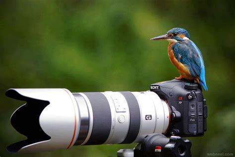 Photographer Photographer by Photographer Waiting Image