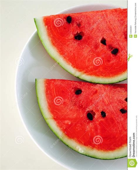 watermelon stock illustration image 53565051