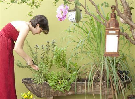 Como Criar Uma Planta De Casas como criar um espa 231 o com plantas em casa im 243 veis cultura mix