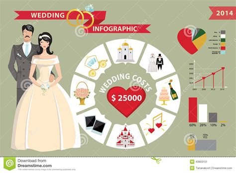 Wedding Infographic Circle Business Concepts Bride Stock Image Image 43903151 Wedding Infographic Template