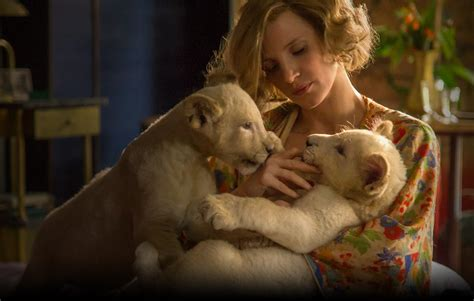 filme schauen the zookeeper s wife the zookeeper s wife film reviews crossfader