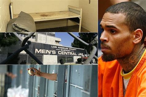 chris brown welcome to mtv prison cribs introducing