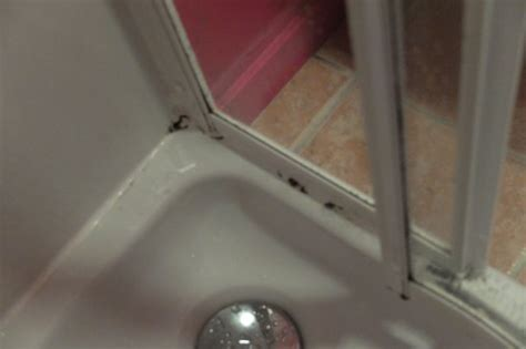 schimmel in der dusche 4817 kyle hotel kyle of lochalsh reviews photos price