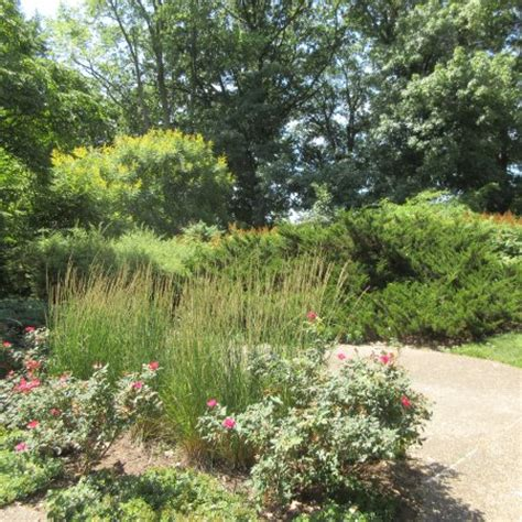 Peoria Gardens by Luthy Botanical Garden Peoria Il Top Tips Before You Go Tripadvisor