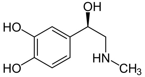cortisol wikipedia la enciclopedia libre adrenalina wikipedia la enciclopedia libre