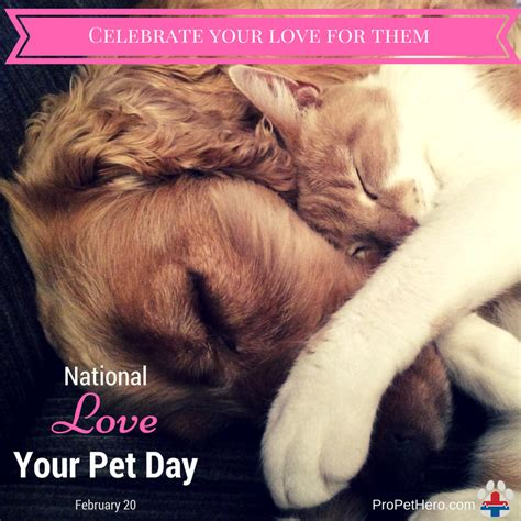 national love  pet day pro pet hero blog
