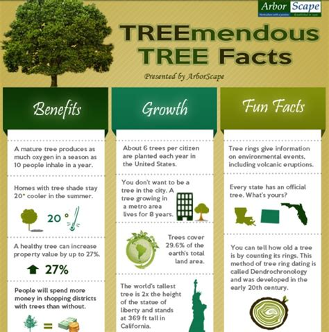 infographic ideas 187 infographic facts best free