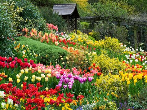 Dalat Flower Garden Explore Uminhnationalpark Flower Gardens In