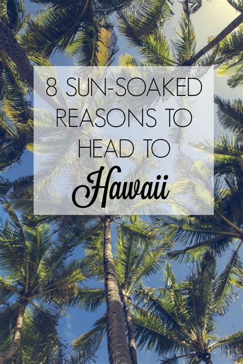 8 Reasons Hawaii Is by 8 Sun Soaked Reasons To To Hawaii Escape With