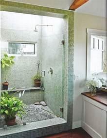 Bathroom Indoor Plants 25 Best Ideas About Bathroom Plants On Plants