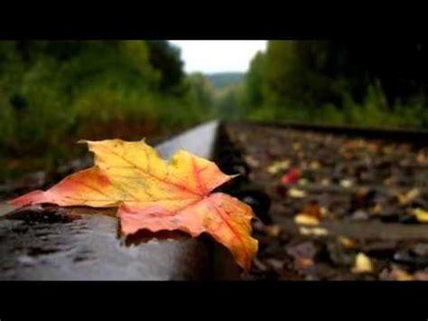 le foglie morte testo le foglie morte