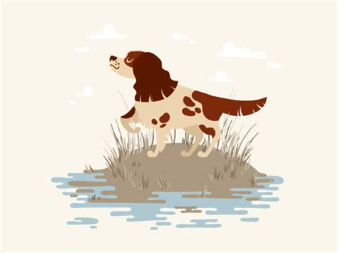 illustrator tutorial dog how to vector a cartoon hunting dog in adobe illustrator