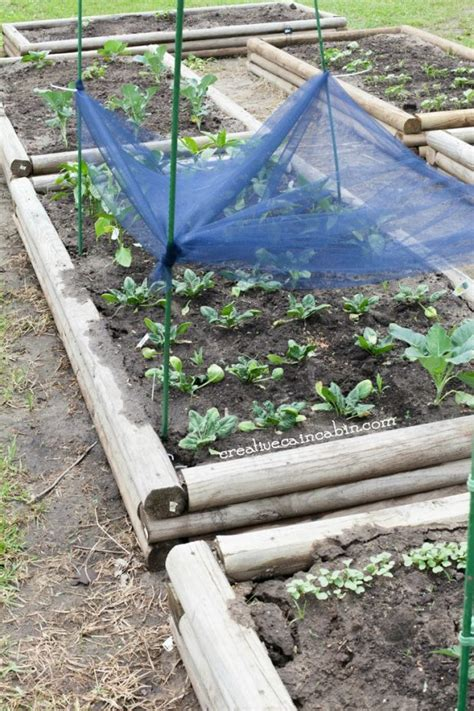 vegetable garden shade cloth garden cloth cheap garden cloth material find garden cloth