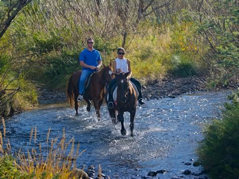 premier resort sani pass southern drakensberg