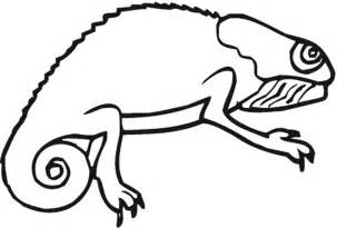 chameleon template reptile coloring part 2