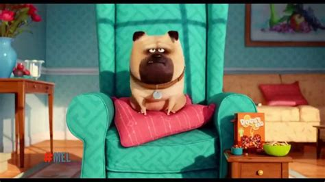 la vida secreta de 6073151527 la vida secreta de tus mascotas clip quot mel quot youtube