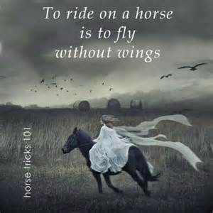 Horseback Is A Sport Essay by 25 Best Ideas About Inspirational Quotes On Quotes Quotes And