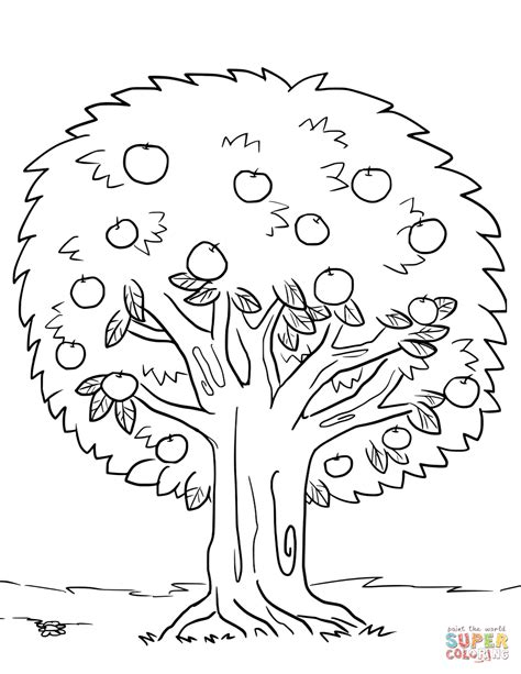 trees coloring pages apple tree coloring page free printable coloring pages