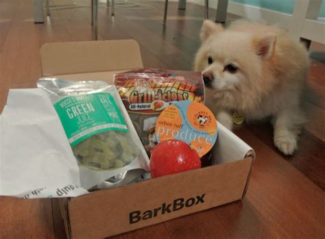 barkbox for dogs barkbox monthly subscription box for dogs modern mix vancouver