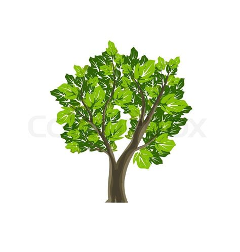 tree symbol tree icon nature vector symbol stock vector colourbox