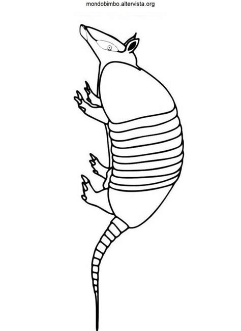 Pictures Of An Armadillo Coloring Home Armadillo Coloring Page