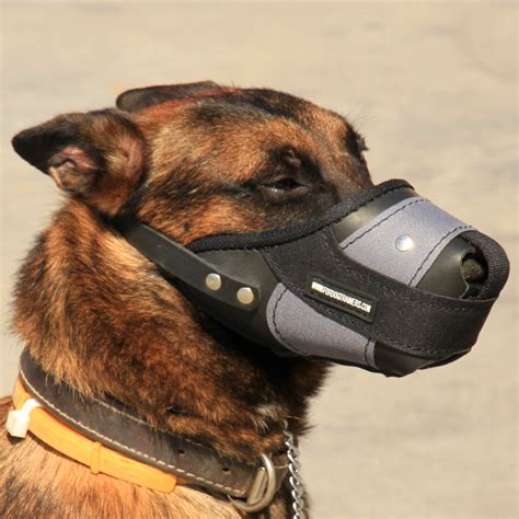muzzle for dogs muzzles for dogs leather muzzle uk new