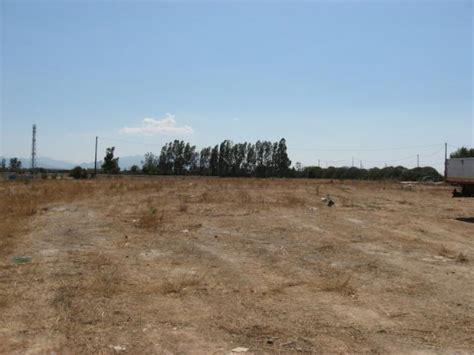 anguillara approva il piano comunale tarquinia riduce le aliquote imu su terreni agricoli e