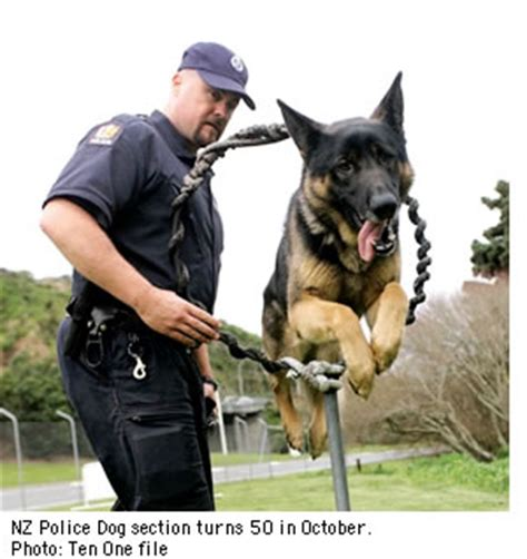 dog section police ten one dog section turns 50