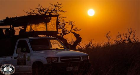 parks nearby safari parks near durban south africa hluhluwe reserve
