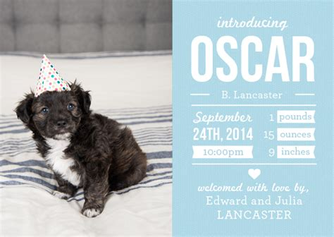 puppy announcement from birth announcements to puppy announcements