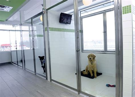 boarding house for dogs 33 best images about 00 dog stuff on pinterest for dogs dog houses and dog