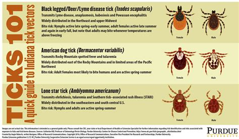 did yolanda know she was bitten by tick bit by a tick next steps and species to know purdue